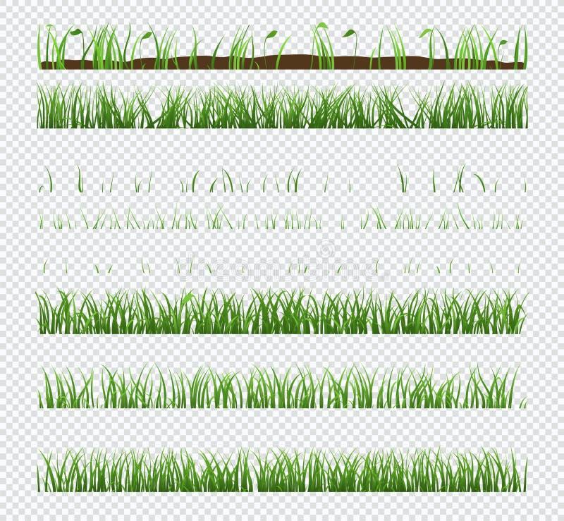 Fije de hierba verde de los elementos con las plantas aisladas en fondo transparente libre illustration