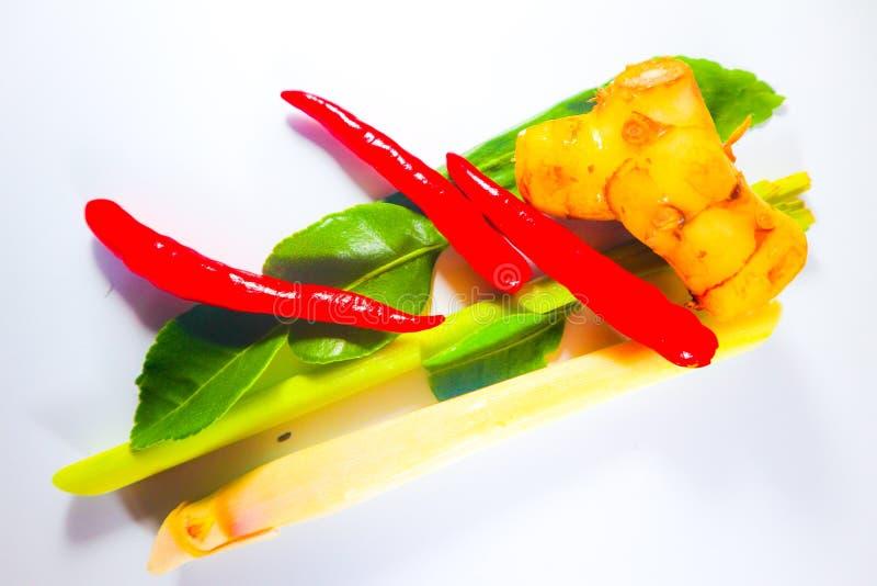Fije de hierbas y de ingredientes frescos de la comida o de tom picante tailandesa yum en el fondo aislado blanco imagen de archivo libre de regalías