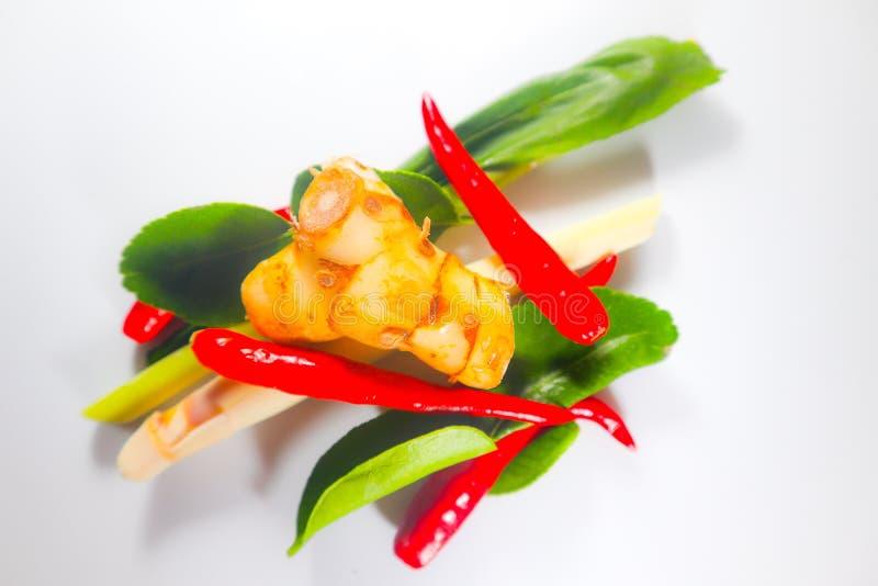 Fije de hierbas y de ingredientes frescos de la comida o de tom picante tailandesa yum en el fondo aislado blanco imagenes de archivo
