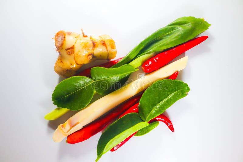 Fije de hierbas y de ingredientes frescos de la comida o de tom picante tailandesa yum en el fondo aislado blanco fotos de archivo libres de regalías