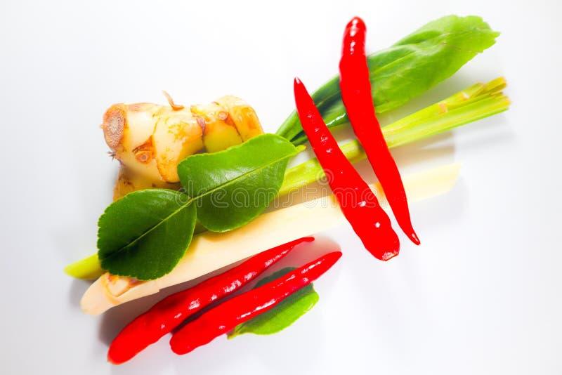 Fije de hierbas y de ingredientes frescos de la comida o de tom picante tailandesa yum en el fondo aislado blanco imágenes de archivo libres de regalías