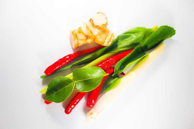 Fije de hierbas y de ingredientes frescos de la comida o de tom picante tailandesa yum en el fondo aislado blanco foto de archivo libre de regalías