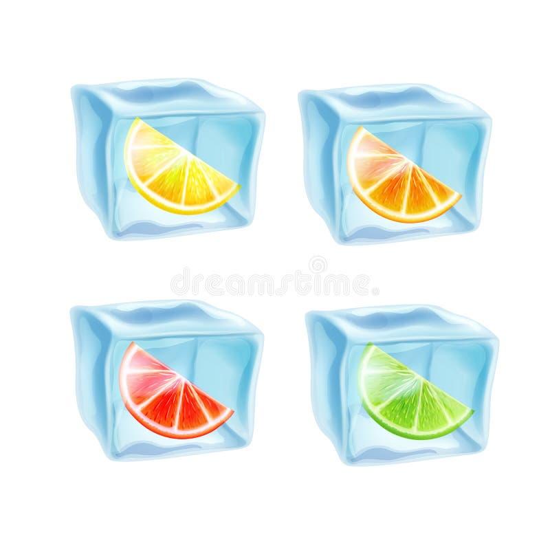 Fije de iconos en hielo, limón, cal y naranja stock de ilustración