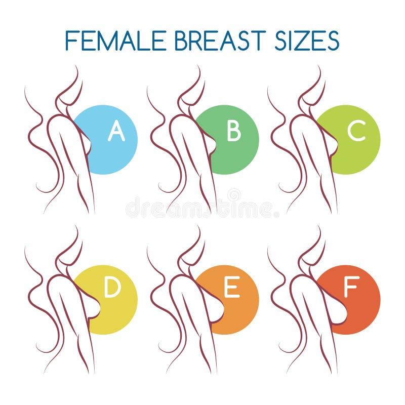 Fije de iconos de las siluetas del diverso tamaño femenino del pecho, opinión lateral de carrocería Tamaños de bustos de pequeño  libre illustration