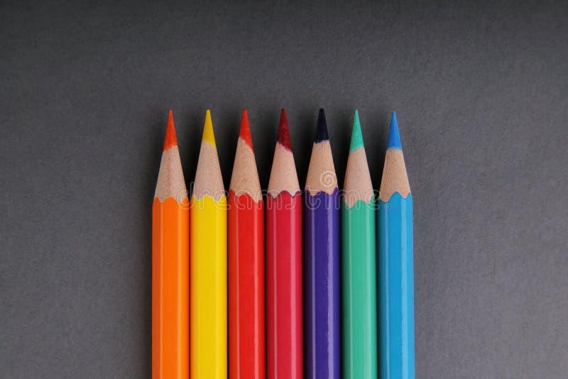 Fije de lápices en un fondo gris imagen de archivo libre de regalías
