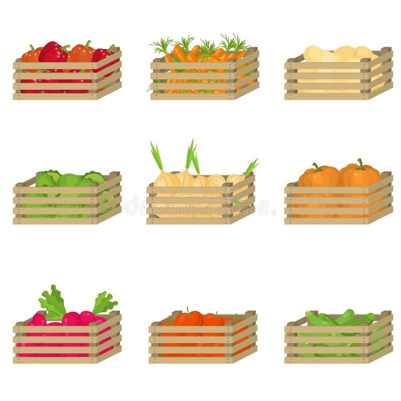Fije de la caja de madera con las verduras frescas, naturales de la granja ilustración del vector