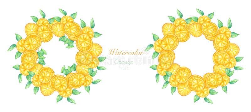 Fije de la fruta anaranjada y las hojas verdes enrruellan libre illustration