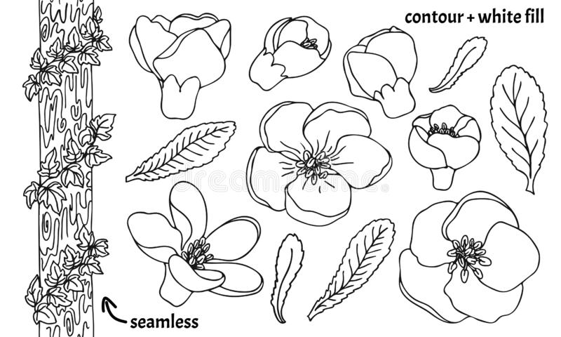 Fije de la mano dibujada para garabatear las flores, las hojas y la hiedra ornamentales del membrillo en árbol Ejemplo del vector libre illustration