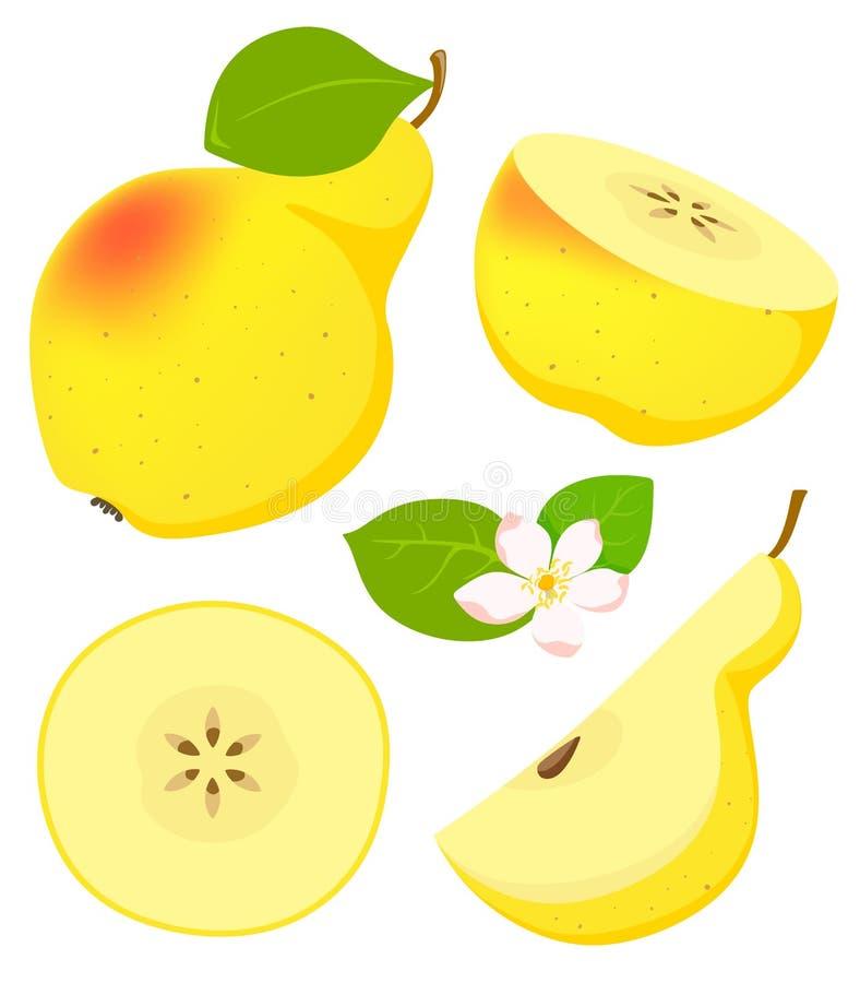 Fije de la pera amarilla aislada en estilo de la historieta con el florecimiento Ilustraci?n del vector en el fondo blanco stock de ilustración