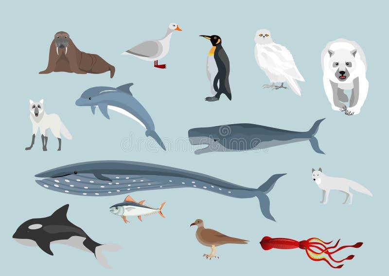 Fije de las aves acuáticas árticas de los animales, stock de ilustración
