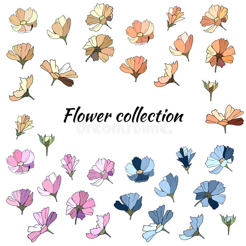 Fije de las flores de la primavera de las flores del rosa, azules y beige en un fondo blanco Colección de margaritas multicoloras stock de ilustración