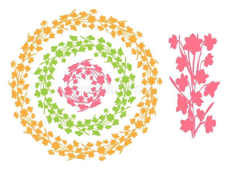 Fije de las fronteras florales del vintage redondo, marcos del círculo de siluetas de las flores del narciso ilustración del vector