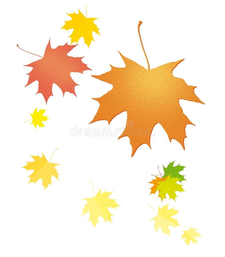 Fije de las hojas de arce del otoño que caen Otoño Ilustración Aislado en el fondo blanco ilustración del vector