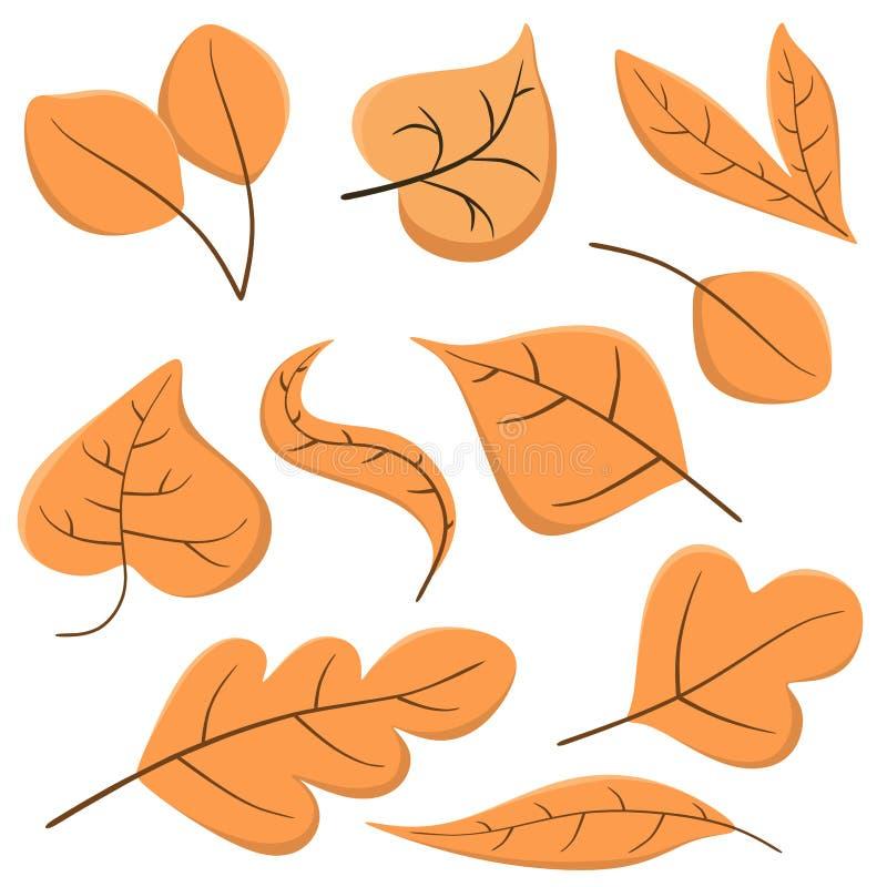 Fije de las hojas de otoño en un estilo de la historieta El vector a?sla en un fondo blanco stock de ilustración