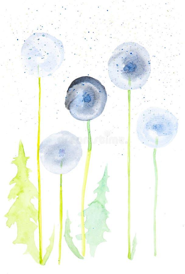Fije de las hojas y de las flores del diente de león entre descensos abstractos Ejemplos de la acuarela aislados en el fondo blan libre illustration