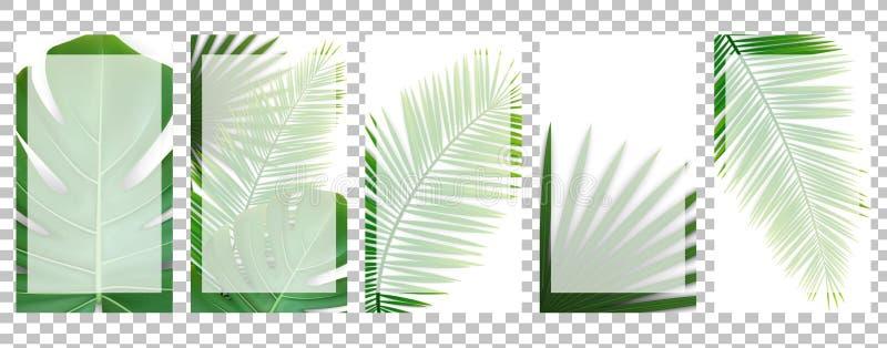 Fije de las plantillas sociales de los medios para las historias con las hojas tropicales verdes foto de archivo