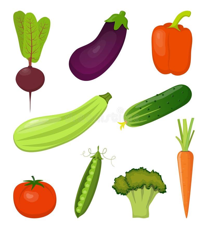 Fije de las verduras frescas, brillante y colorido, aisladas en blanco Remolachas, zanahorias, calabacín, berenjena, bróculi, pim stock de ilustración