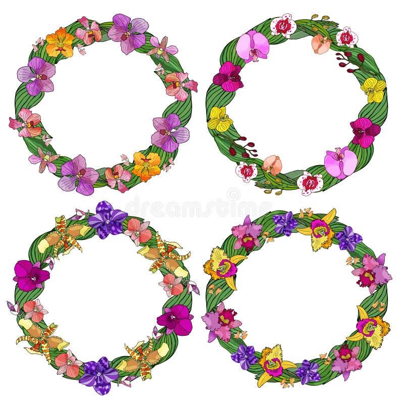 Fije de los bastidores del círculo hechos de orquídeas y de elementos florales ilustración del vector