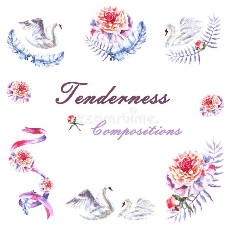 Fije de los cisnes pintados a mano de la acuarela, peonías, ramita, cinta, plumas stock de ilustración