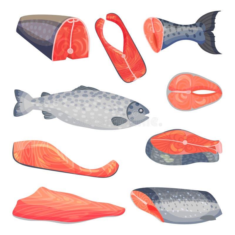 Fije de pedazos de salmones Ejemplo del vector en un fondo blanco ilustración del vector