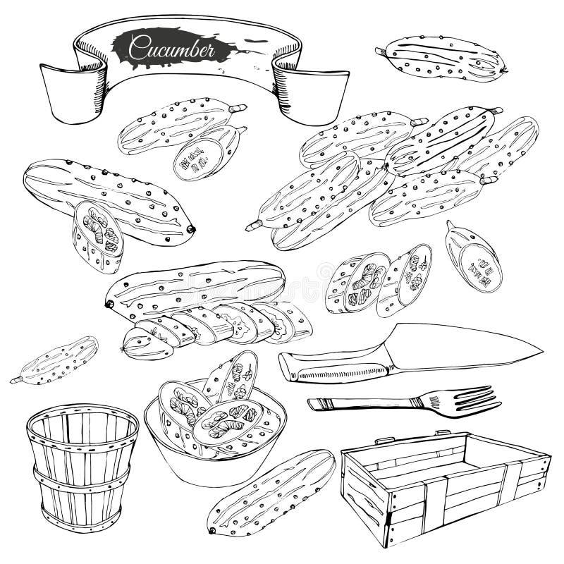 Fije de pepinos, de cesta y de otros objetos exhaustos de la mano Composición monocromática ilustración del vector