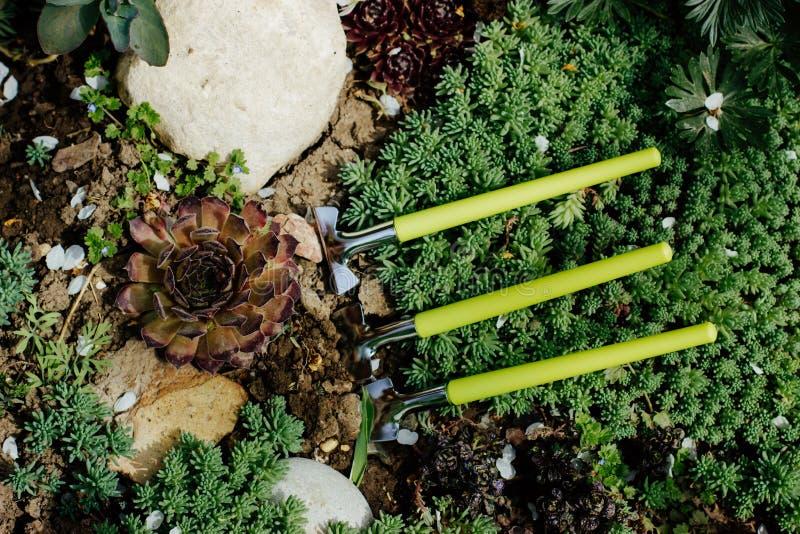 Fije de pequeños utensilios de jardinería fotografía de archivo libre de regalías