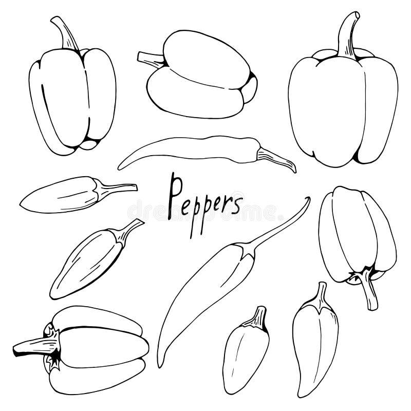 Fije de pimientas blancos y negros en el fondo blanco libre illustration