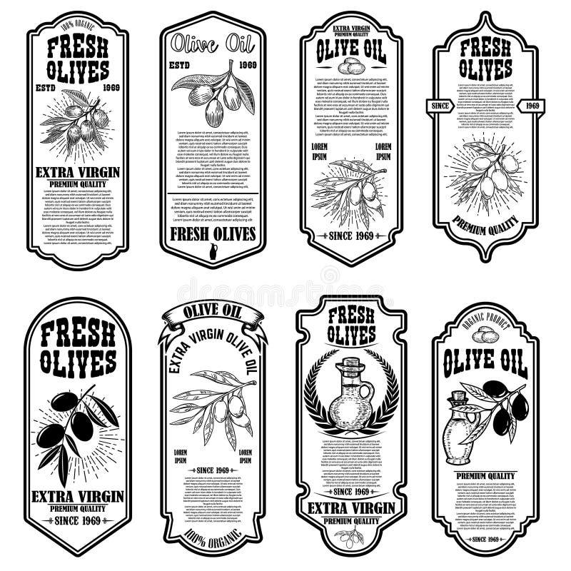 Fije de plantillas del aviador del aceite de oliva del vintage Dise?e el elemento para el logotipo, etiqueta, emblema, muestra, i libre illustration