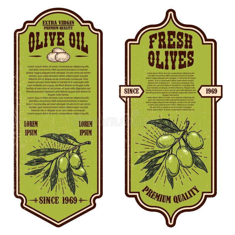 Fije de plantillas del aviador del aceite de oliva del vintage Dise?e el elemento para el logotipo, etiqueta, emblema, muestra, i stock de ilustración