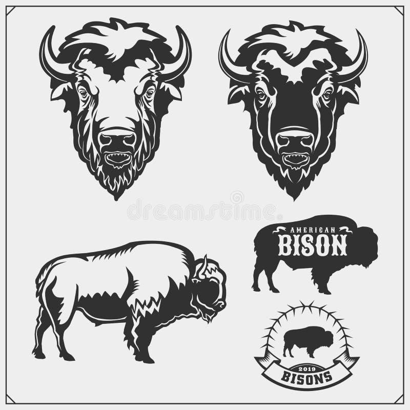Fije de siluetas y del ejemplo del bisonte del vector Dise?o de la impresi?n para la camiseta plantilla del dise?o del emblema ilustración del vector