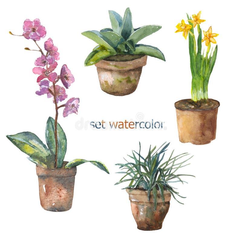 Fije las flores libre illustration
