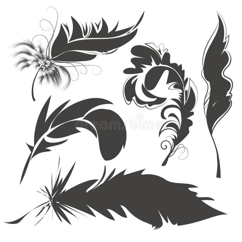 Fije las plumas de pájaro para dibujar libre illustration