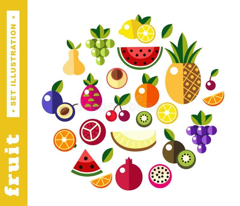Fije los ejemplos de la fruta fresca libre illustration