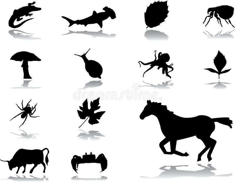 Fije los iconos - 151. Naturaleza ilustración del vector