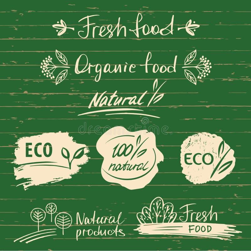 Fije los logotipos, etiquetas con diseños naturales del bosquejo de la comida fresca Orgánico ilustración del vector