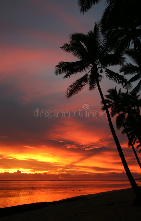 Fiji sunset royalty free stock image