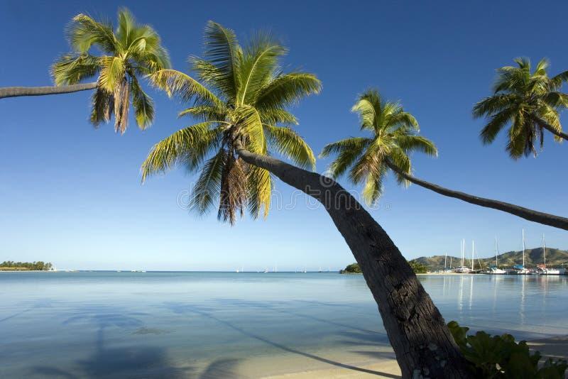 Fiji - Tropisch strand - Stille Zuidzee stock foto