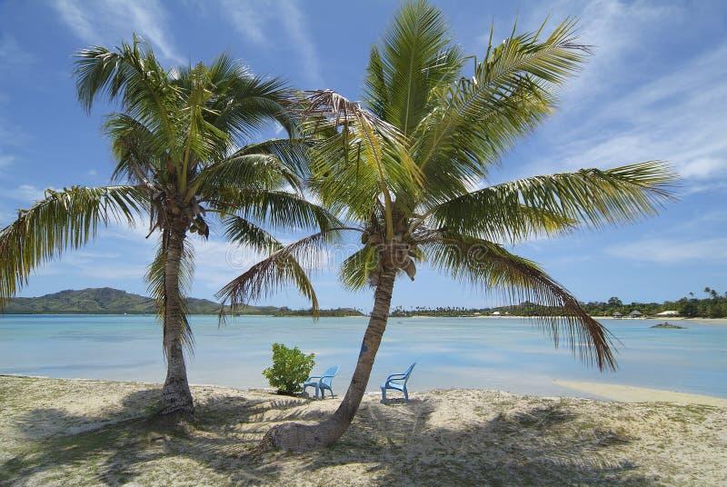 Fiji wyspa, zdjęcie stock
