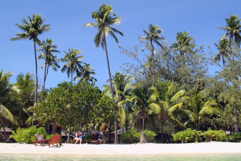 Fiji wyspa zdjęcie royalty free