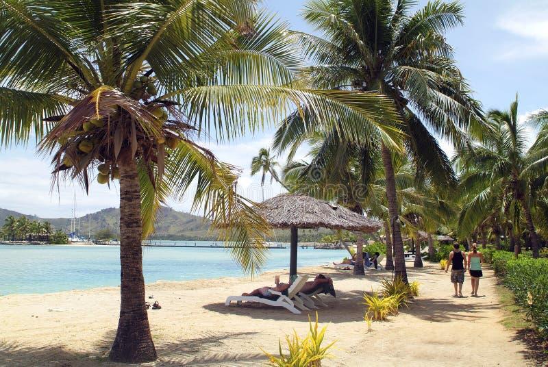 Fiji wyspa obrazy stock
