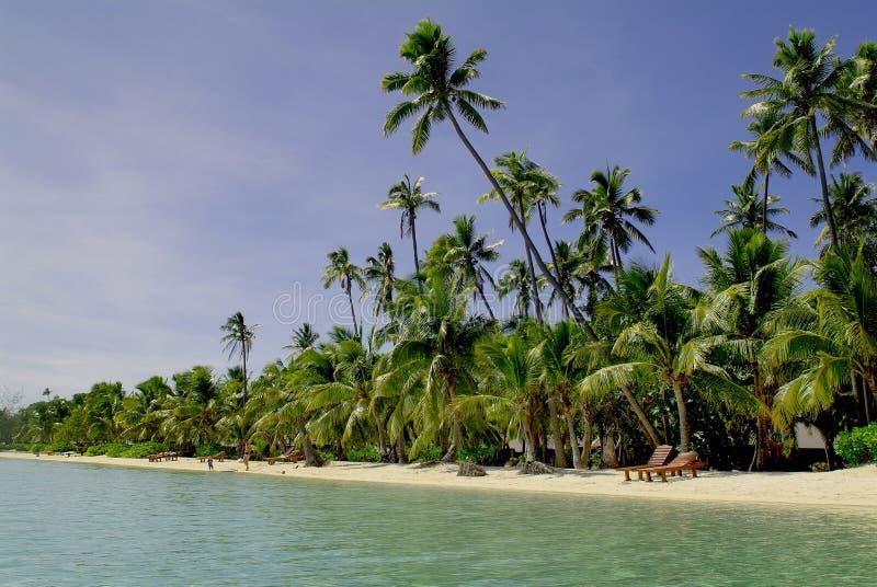 Fiji wyspa obraz royalty free
