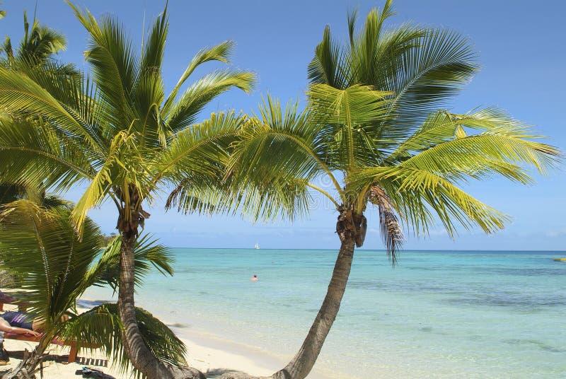 Fiji wyspa, plaża obraz stock
