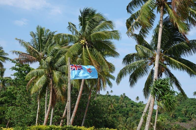 Fijian flaga z drzewkami palmowymi przy Beqa wyspą, Fiji zdjęcie stock