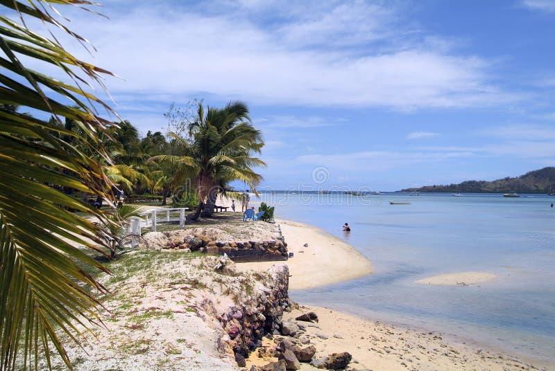 Fijiansk ö, arkivbilder