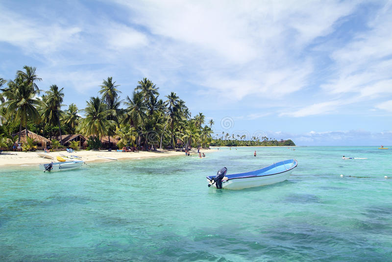 Fijiansk ö arkivbild