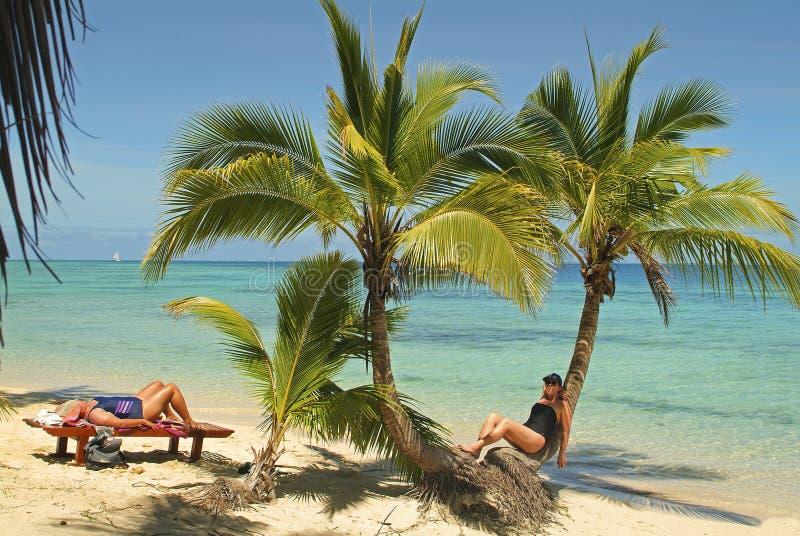 Fijiansk ö, strand royaltyfri bild