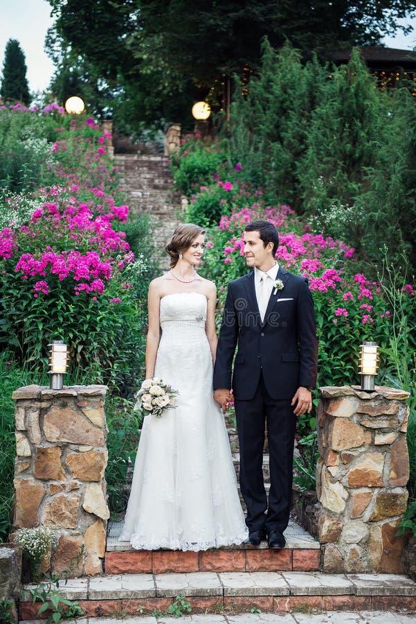 Fijn kunsthuwelijk stock foto's