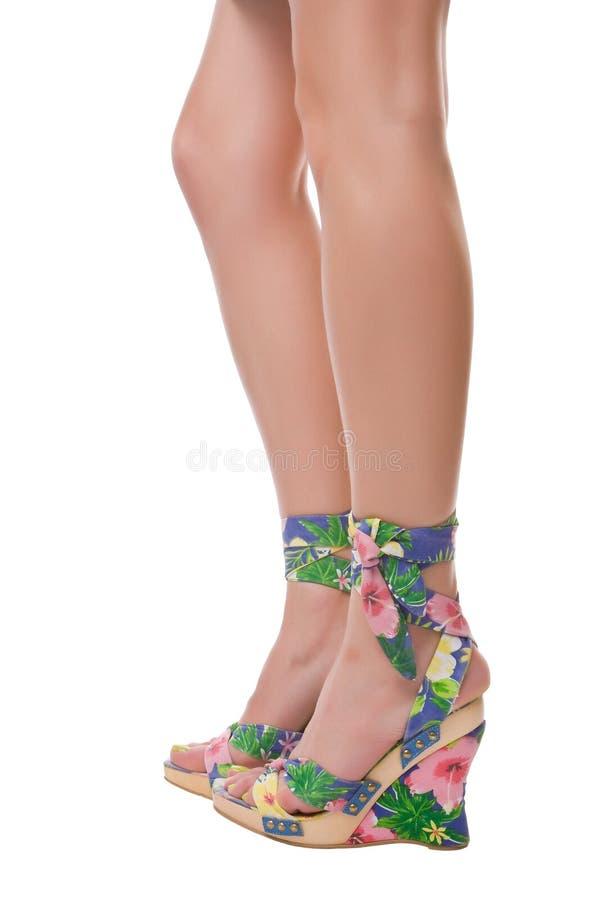Fijne benen stock afbeeldingen