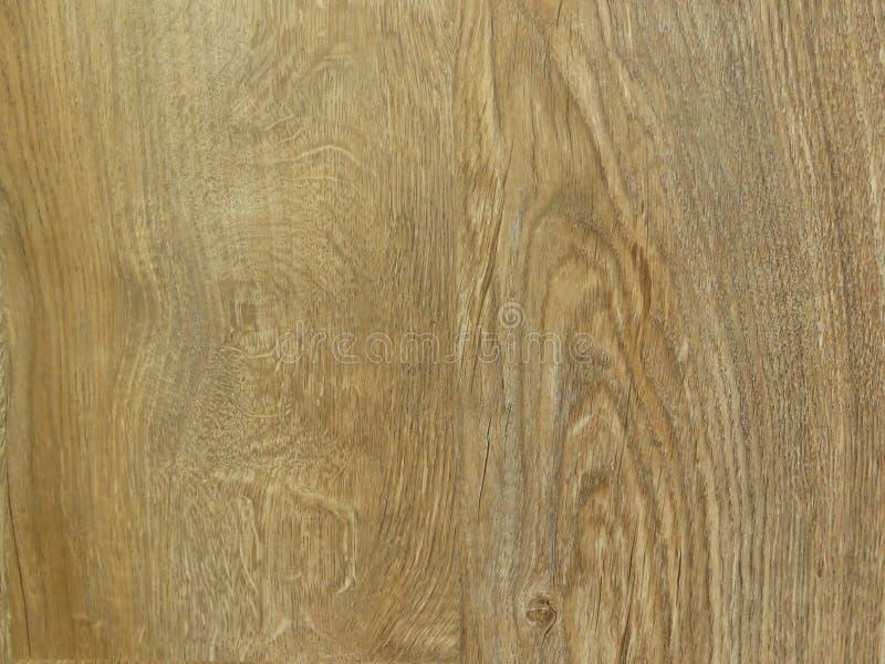 Fijne eiken het patroonachtergrond van de boom houten textuur De uitstekende Korrel van het Ontwerp Eiken Hout stock afbeeldingen