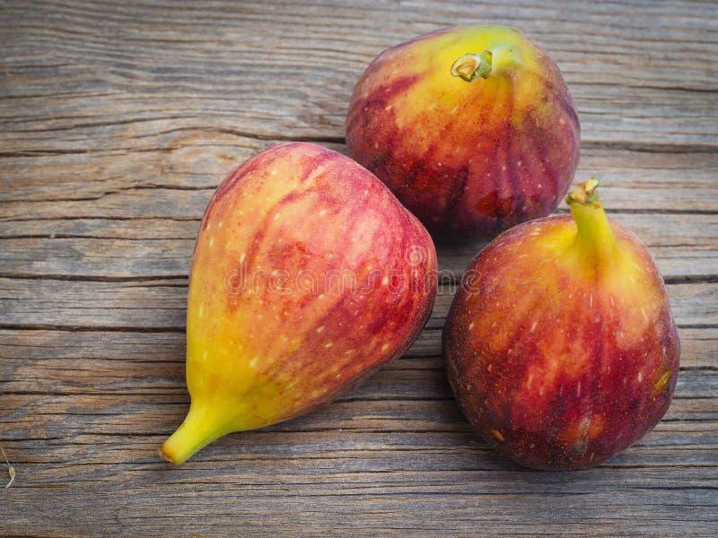 Fikonträd för ny frukt på gamla bräden royaltyfri foto